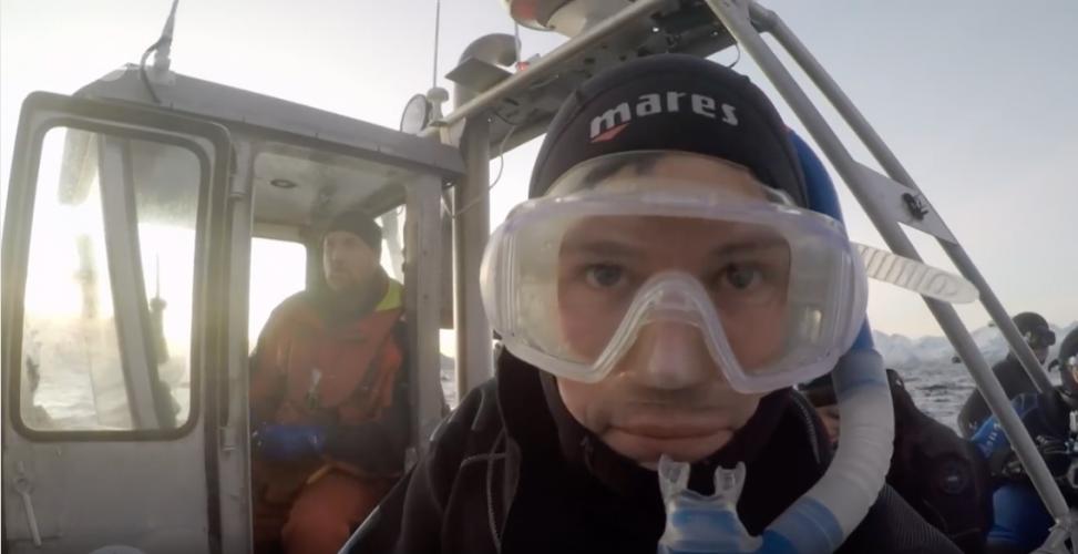 ZDF | Reportage | Tauchen mit Orcas Teil 1