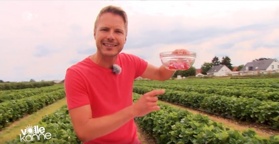 ZDF | Besserwisser | Was Sie noch nicht über Erdbeeren wussten