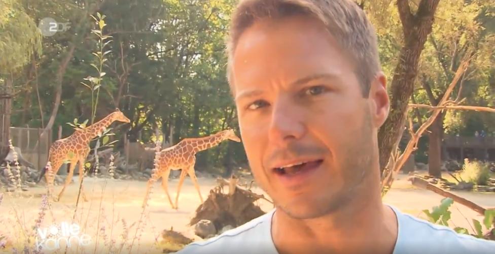 ZDF | Besserwisser | Wie kommunizieren Giraffen?