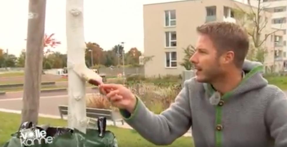 ZDF | Besserwisser | Weiße Bäume
