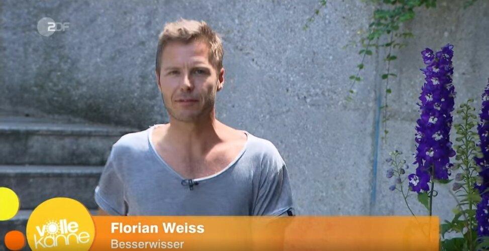 ZDF | Besserwisser | Unter die Haube kommen
